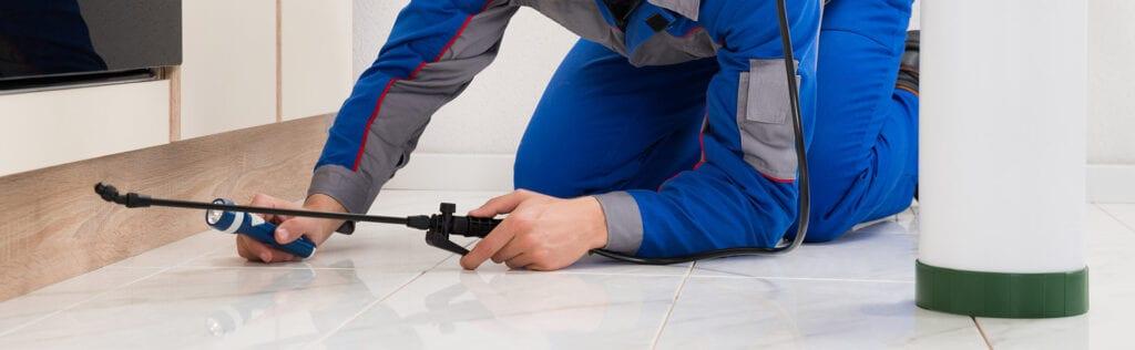 Interior Pest Control Services
