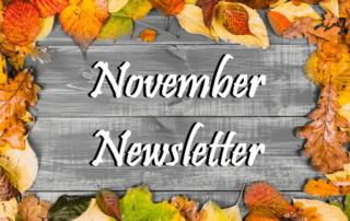 The Home Care Pro Newsletter: November 2020